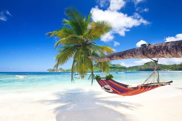 Aangepaste openingstijden tijdens de vakantieperiode
